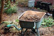 Štěpka je organický materiál a jako taková do kompostu patří.