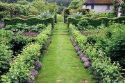 Tento snímek zachycuje hezkou ukázku toho, jak úhledně a prakticky může být uspořádána užitková zahrada.