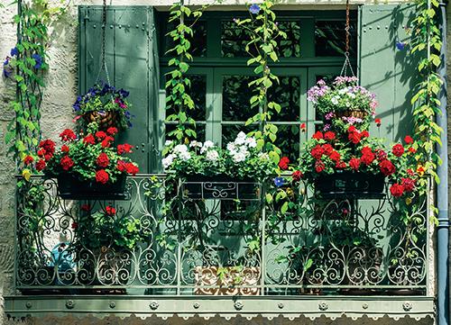 Základem pěkného balkonu jsou dobře vybrané rostliny.