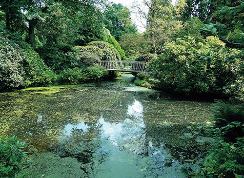 Vodní kanály v Trompenburg Tuinen provázejí návštěvníky celou zahradou.
