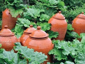 Zajímavou pomůckou pro pěstování některých druhů zeleniny jsou keramické zvony ke krátkodobému zatemnění rostlin.