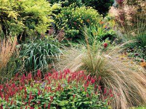 Podzim může být na zahradě opravdu krásný. Stačí vytvořit kout, na který z domu či při otevření branky hned uvidíte.