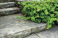Pokud schody z obou stran zapustíte do terénu, například do záhonů s trvalkami, stanou se harmonickou součástí zahrady.