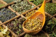 Na své vlastní zahradě si vytvořte praktickou bylinkovou zahrádku, která bude praktická i krásná.