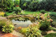 Okrasná jezírka mají svou dlouhou tradici nejen v rodinných zahradách.
