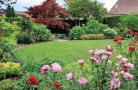 Na začátku léta rozkvetou mezi bylinkami růže, které ještě znásobí vůně v bezprostřední blízkosti terasy.