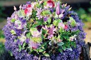Letní kytici z květin ze zahrady a z truhlíků lemují levandule.