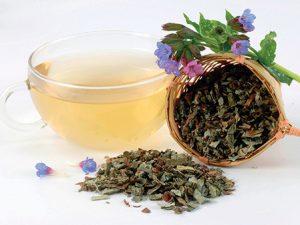 Čaj z plicníku
