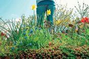 Střešní zahrady poskytují zelenou, ničím nerušenou obytnou a relaxační zónu.