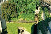 Zelená střecha se uplatní i ve městě.