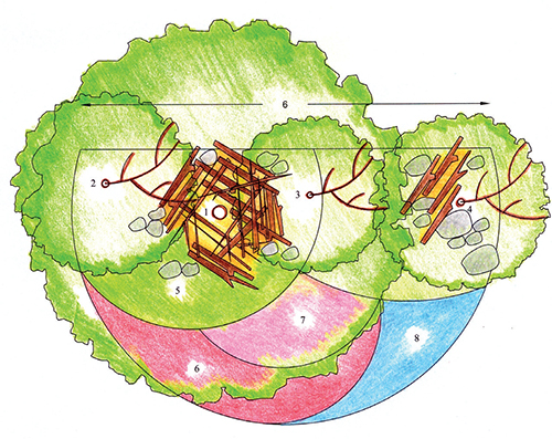 Návrh výsadby záhonu pro ježky