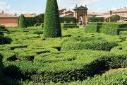 Nejvýraznější částí zahrady je formální výsadba se stříhanými stálezelenými dřevinami.