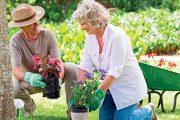 Lidé na prahu důchodu se často nechají unést vidinou veliké a doslova rajské zahrady.