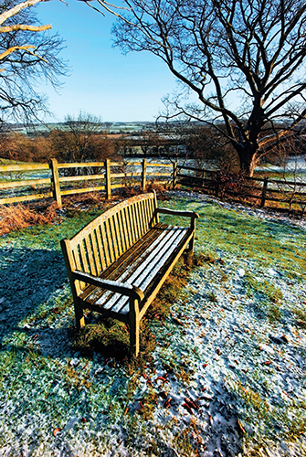 V nížinách je v únoru mnohdy již po zimě a majitelé zahrad začínají s prvními pracemi.