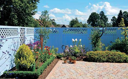Celkový pohled na zahrádku kolem modrého plotu – uprostřed snímku je vidět hortenzie latnatá