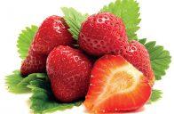 Stáleplodící jahodník 'Albion' má trvanlivé, velké, pevné plody příjemné chuti.