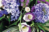 Pusťte se proto s radostí do vytváření jarní kytice, protože už je z čeho vybírat.