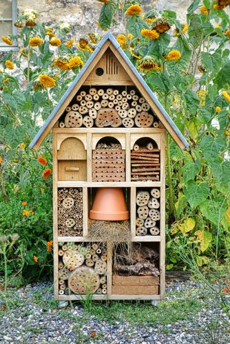 V boji s chorobami a škůdci vám pomohou užiteční živočichové. Vytvořte jim úkryty a domečky.