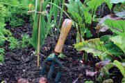 V permakulturní zahradě se na malé ploše často pěstuje i několik druhů zeleniny.