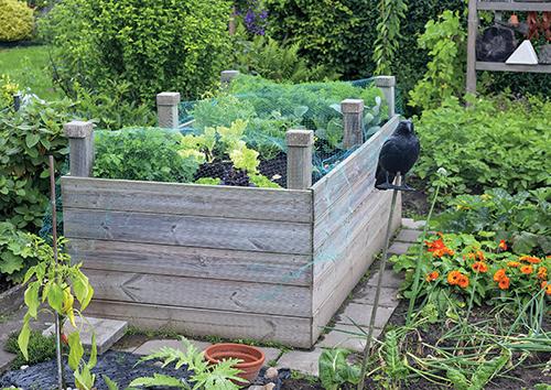 Vysoký záhon může být pevně ohraničený, v malé zahradě tak lépe využijete prostor.