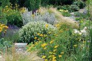Lehkost a vzdušnost dodávají záhonu okrasné traviny. Kavyl péřovitý skvěle doplňuje výsadbu bílé šalvěje a krásnoočka.