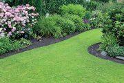 Na jaře rostou intenzivně všechny rostliny a pozadu není ani trávník.