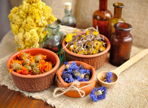 Macerovat můžete sušené i čerstvé bylinky.