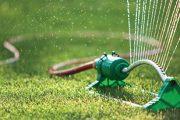 Mladý, na jaře vysetý porost potřebuje menší, ale častější dávky vody, zapojený trávník ocení navečer pořádnou a dlouhou zálivku.