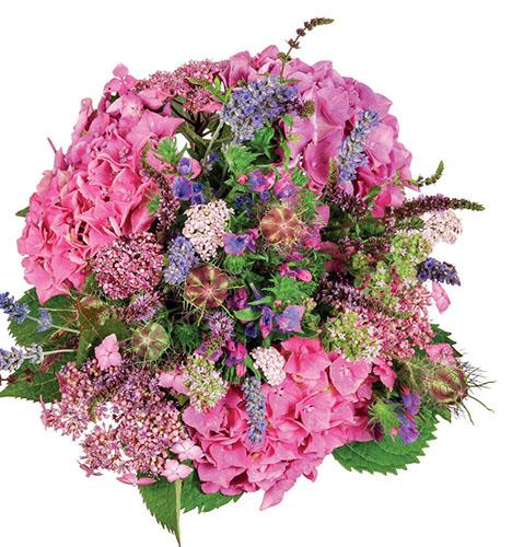 Růžová jde ruku v ruce se svěže zelenou a fialovou.