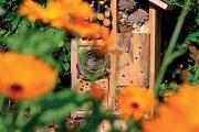 Pokud je vám používání chemických postřiků cizí, nalákejte do zahrady užitečné živočichy, kteří s obtížnými škůdci zatočí.