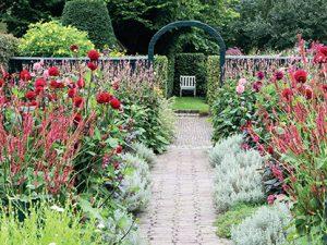 Průhled do zadní části zahrady láká ke vstupu.
