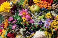 Veselé barvy vnášejí do života sílu, aktivitu, dobrou náladu a povzbuzují k tvůrčí činnosti.