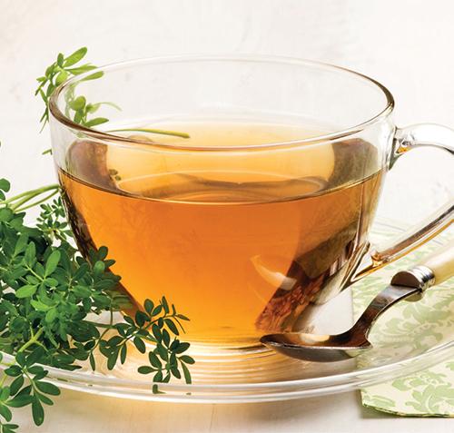 Routa patří k méně známým rostlinám a používá se hlavně v lidovém léčitelství.