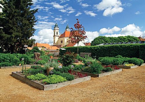 Vyhledávaným cílem je i Bylinková zahrada Tiree Chmelar ve Valticích.