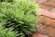 Při výběru dlažby berte v úvahu také její protiskluzové vlastnosti.