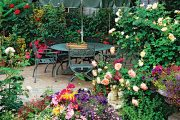 Letní terasy a balkony v záplavě květin – to je sen mnoha pěstitelů.