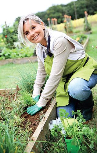 Zahrádkaření pro mnohé pěstitele představuje snadný způsob, jak získat kvalitní potraviny.