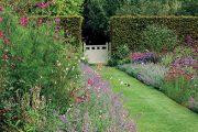 Dlouhodobý efekt anglických záhonů je založen z části na samovýsevných rostlinách, skupinové výsadbě i nenápadných oporách vysokých rostlin bránících jejich rozklesnutí.