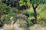 Koruny stromů fungují v zahradě i jako clona, která ochrání trávník a trvalky před prudkým sluncem.