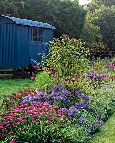 Ke konci léta patří zahrada hlavně květům nenáročných vytrvalých aster (Aster x frikartii 'Mönch') a rozchodníků. Odkvetlé úbory aster není třeba otrháva a jejich trsy se dělí jednou za čtyři roky.