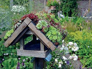 Mít na své střeše vlastní zahradu je projevem silného ekologického cítění.