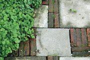 Zahradní chodníček bývá při vytváření zahrady často diskutovaným tématem.