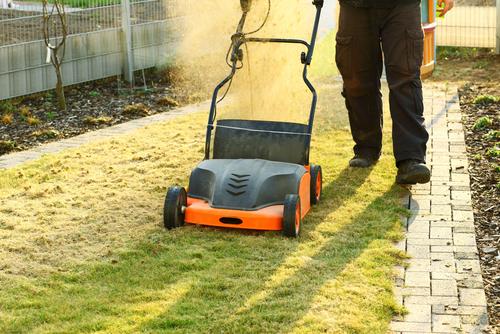 Při vertikutaci dojde k odstranění velkého množství plsti, kterou je nutné pečlivě z trávníku vyhrabat.
