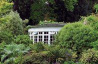 Působivá kombinace rostlin zajímavých tvarů a stálezelených keřů.