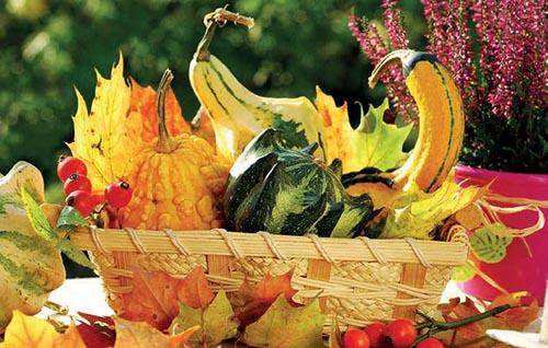 Využijte přírodniny, které nasbíráte na podzimních procházkách.