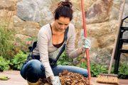 Organický materiál ze zahrady nepovažujte za obtížný odpad, skvěle doplní váš kompost nebo si založte vlastní listovku.