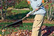 Listí hrabte později, jinak bude hrabání vaše denní činnost.
