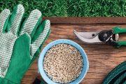 Úspěch hnojení spočívá v jeho rovnoměrnosti. Zde pomohou rozmetadla nebo speciální strojky.