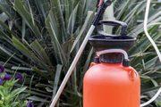 Zvláště na podzim sledujte průběh teplot, ty ovlivní použití postřiků proti plevelům i samotnou seč.
