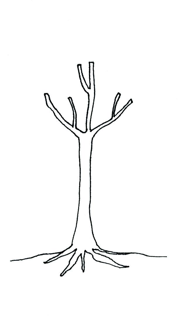 Narušení přirozeného habitu stromu